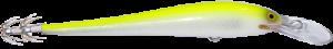 Squid_SFC